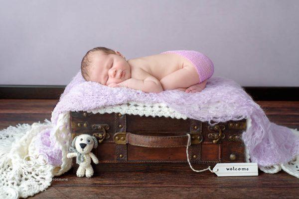 Baby-Fotograf Idstein - Neugeborenenfoto