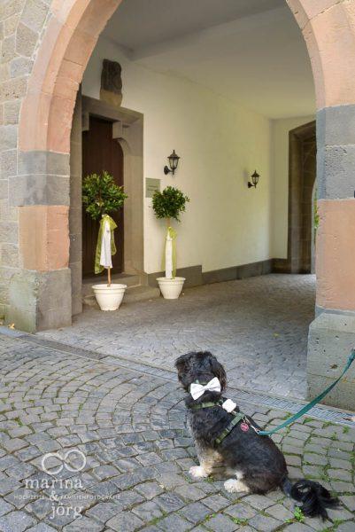 Hochzeitsreportage in Gießen - Hochzeitsfotografen Marina & Jörg